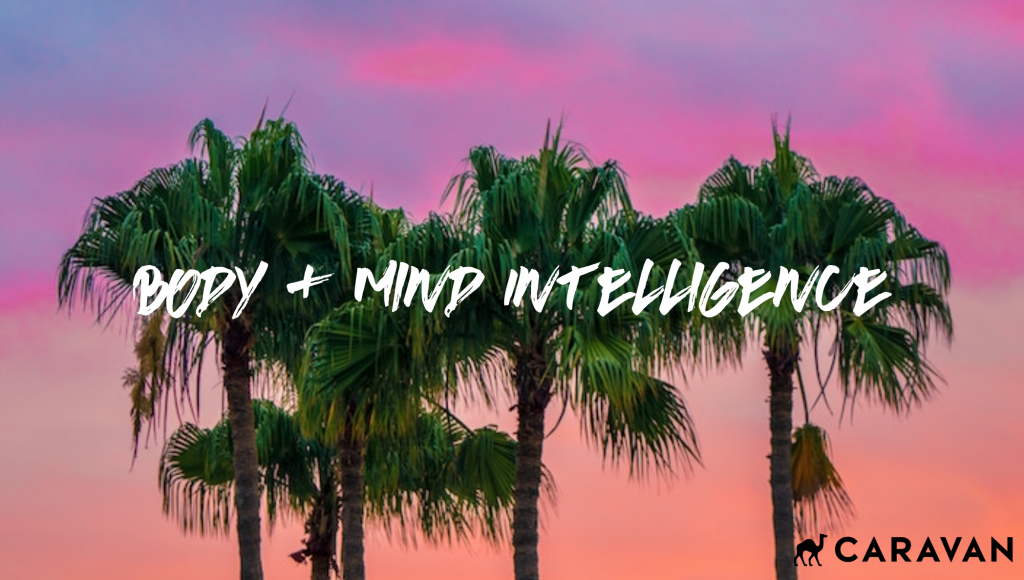 BODY & MIND INTELLIGENCE